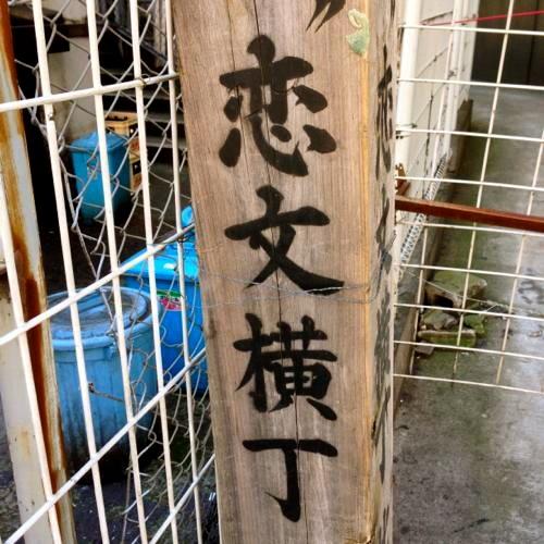 恋文横丁ふ〜らふ〜ら〜SHIBUYA・シマウマのブルース